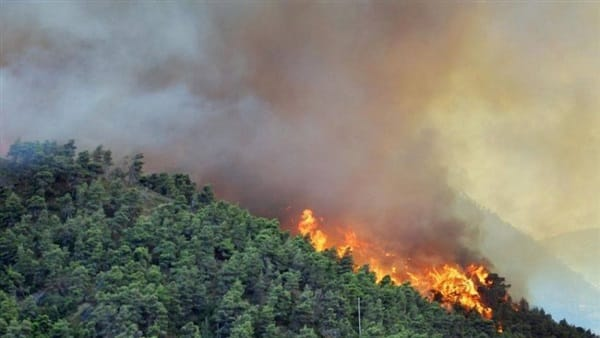 حرائق الغابات تطغى على التوقعات الاقتصادية الأسترالية