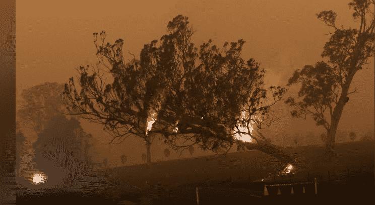 دخان حرائق الغابات الأسترالية يصل ملبورن رغم برودة الطقس